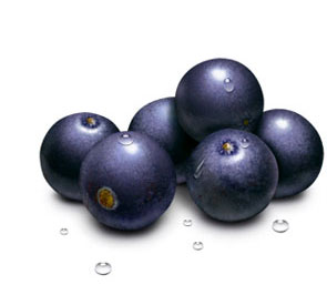 The acai berry has profound health benefits and nutritional contents.